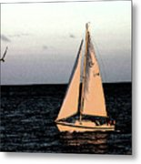 Sailing Off Of Diamond Head Metal Print