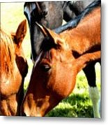 Sally And Friends Metal Print
