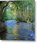 Salmon Creek Majestic  Metal Print by Tim Rice