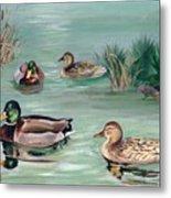 Sanctuary For Ducks Metal Print