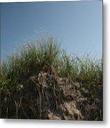 Sand Dunes IIi Metal Print