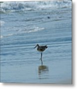 Sandpiper On The Beach Metal Print
