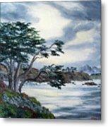 Santa Cruz Cypress Tree Metal Print