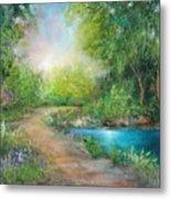 Santa Rosa Creek Path Metal Print