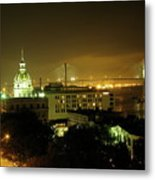 Savannah At Night Metal Print