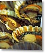 Scallops At Rialto Market In Venice Metal Print