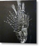 Scorpion Fish Metal Print
