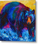Scouting For Fish - Black Bear Metal Print