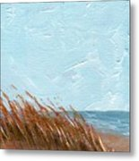 Sea Grass On Tybee Island Metal Print