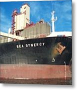 Sea Synergy Hull Metal Print