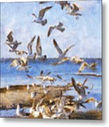 Seagull Convention Metal Print