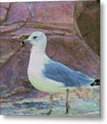Seagull Strut Metal Print