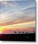 Seagulls And Sunset On Lake Erie Metal Print