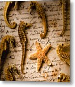 Seahorses And Starfish On Old Letter Metal Print by Garry Gay