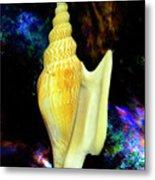 Seashell Strombus Listeri Metal Print