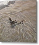 Seashore Reflections Metal Print