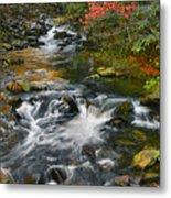 Serene Mountain Stream Metal Print
