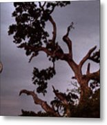 Seven Forty Pm Metal Print
