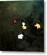 Seven Leaves At The Pond's Edge Metal Print