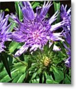Shades Of Blue And Green Metal Print