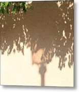 Shadow Of A Lamp And Bushes In Venice Metal Print