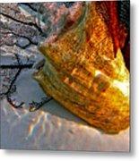 Shadow On The Shell Metal Print