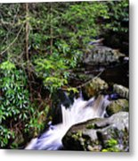 Shays Run Blackwater Falls State Park Metal Print