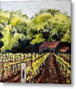 Shed In A Vineyard Metal Print