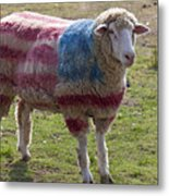 Sheep With American Flag Metal Print by Garry Gay
