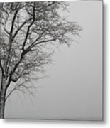 Shore Road Winter 2010 Metal Print