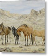 Siesta At Noon Metal Print by Cathy Cleveland