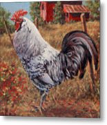 Silver Laced Rock Rooster Metal Print by Richard De Wolfe