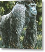 Silverback-king Of The Mountain Mist Metal Print