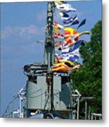 Silversides Flags Metal Print