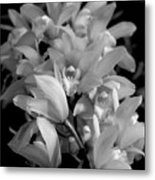 Simply Orchids Metal Print