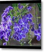 Sky Flower Window  Metal Print