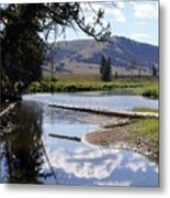 Slough Creek 1 Metal Print