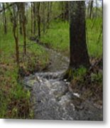Small Stream In The Woods Metal Print