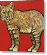 Smug Bobcat Metal Print