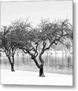 Snow Along The Schuylkill River Metal Print