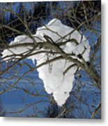 Snow And Africa Metal Print