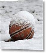 Snow Ball Metal Print