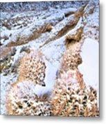 Snow Covered Cactus Below Mount Whitney Eastern Sierras Metal Print