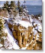 Snow In The Park Acadia Maine Metal Print