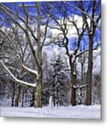 Snowman In Central Park Nyc Metal Print