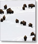 Snowy Migration Metal Print