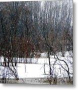 Snowy River Metal Print