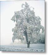 Snowy Winter Landscape Metal Print by John Foxx