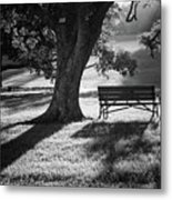 Somewhere I Belong Metal Print