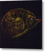 Sound Asleep II Metal Print